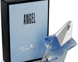angel-w