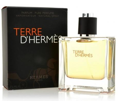 terre pure perfume
