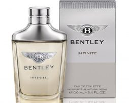 bentley-infinite