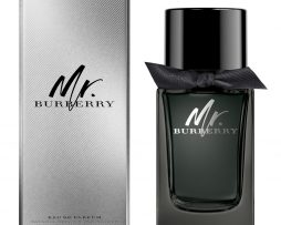 mr_burberry_edp